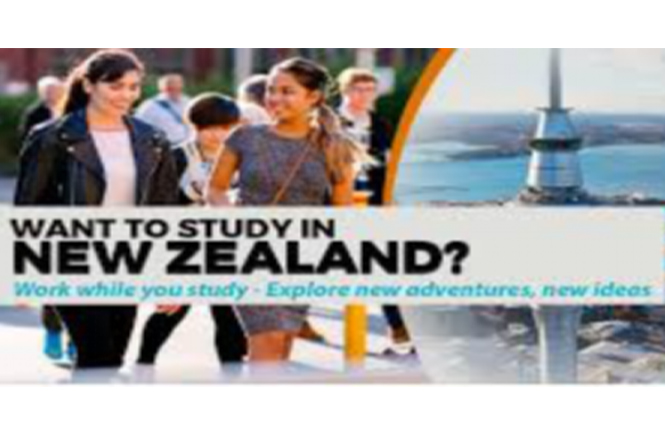 Why should you choose to study in New Zealand?
